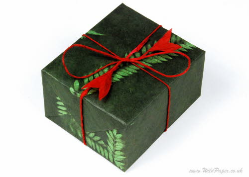 Gift wrapped present in Green Fern paper